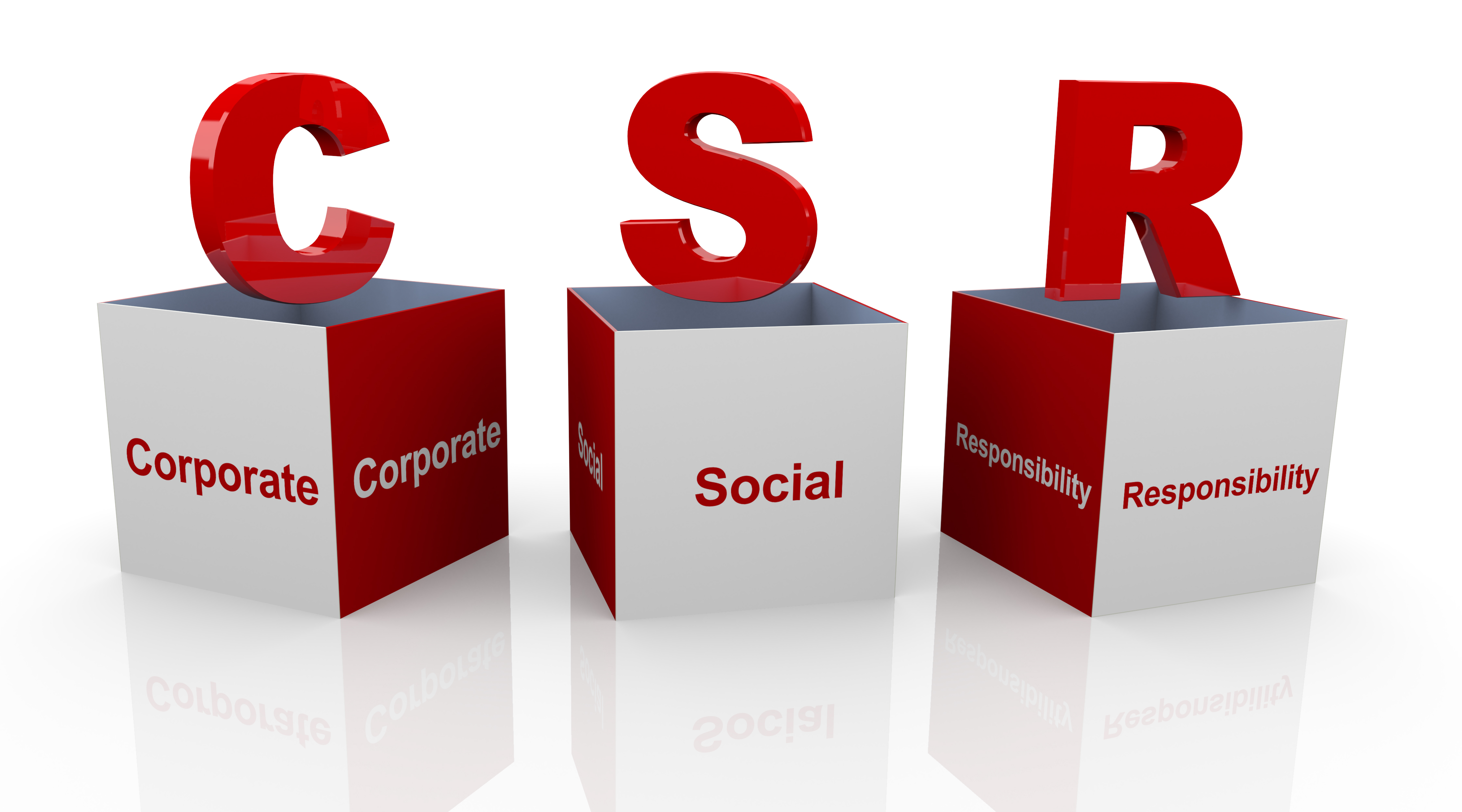the objectives and importance of corporate social responsibility Corporate social responsibility (csr) is a business model that helps a company be socially accountable — to itself, its stakeholders, and the public.